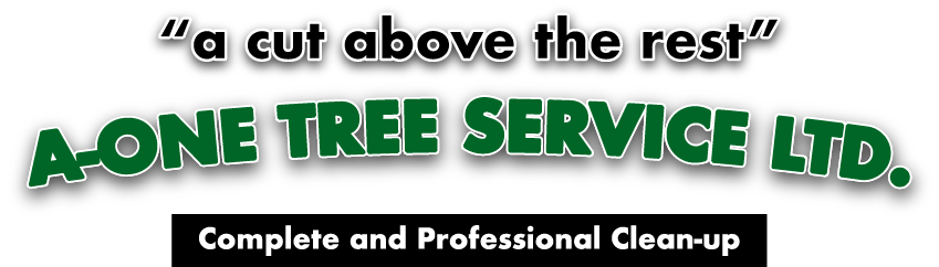 Call A-One Tree Services Today!